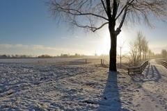 sneeuw 30 jan.2015 Piershil 028